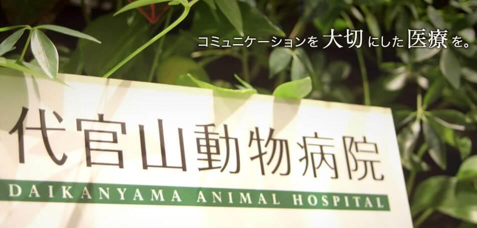 代官山動物病院